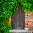 Wooden doors in brick wall covered with green plant leaves — Stock Photo #29071565