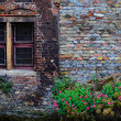 Old vintage brick wall with rusty window and flowers — Stock Photo