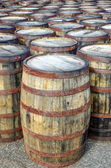 Stack of whisky casks and barrels — Photo