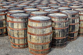 Stacked whisky casks and barrels — Photo