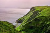 Ocean coastline with green cliffs in Scottish highlands — Stock Photo