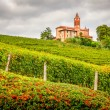 Landscape view of vineyards and old church in Piemont area, Ital — Stock Photo