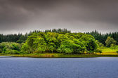 Idyllic island in the lake with green trees, Scotland — Stock Photo