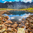 Scenic vertical view of a mountain lake in High Tatras, Slovakia — Stock Photo #39656763
