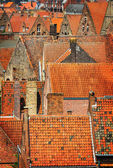Detail of old orange rooftops in historical town — Stock Photo