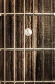 Detail close-up view of guitar strings and frets — Stock Photo