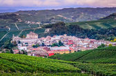 Scenic view of Barolo village in Italy — Stock Photo