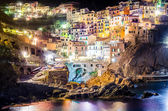 Night view of colorful village Manarola in Cinque Terre — Stok fotoğraf
