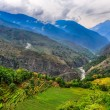 Tropical mountain landscape with fields in Nepal — Stock Photo