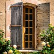 Detail of old vintage wooden window with wild roses — Stock Photo #44208667