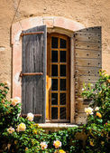 Detail of old vintage wooden window with wild roses — Stock Photo