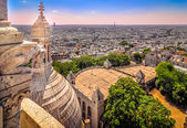 Cityscape of Paris from Sacre Coeur cathedral — Stock Photo