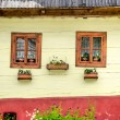 Detail of colorful windows with flowers on old traditional house — Stock Photo #48387627