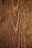 Detail of wood timber with rough structure — Stock Photo