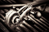 Detail of violin head with string background — Stock Photo