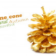Golden pine cone isolated on white - Stock Photo