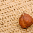 Hazelnuts on burlap background - Stock Photo