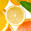 Mix of citrus slice - Stock Photo