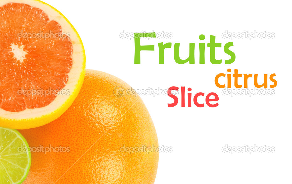 Citrus fruits on white  Photo #13846956