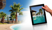 Piscina, palme e tablet pc — Foto Stock
