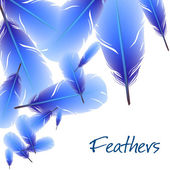 Background with feathers — Vetor de Stock