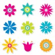 Colorful flowers set — Stock Vector