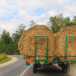 Stock Photo: Transportation of haystacks