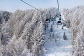 Chair lift between beautiful firs in winter mountains — 图库照片
