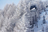 Chair lift between beautiful firs in winter mountains — Stock Photo