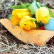 Basket of easter eggs and tulips on hay - Stock Photo