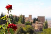 アルハンブラ宮殿の全景 — ストック写真