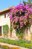 Garden of Alhambra — Stock Photo