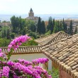 Panorama of Alhambra — Foto Stock