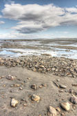 Arctic landscape — Stock Photo