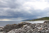 Summer north norwegian landscape — Stock Photo