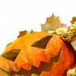 Halloween pumpkin — Stock Photo #31570313