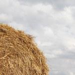Haystacks close-up — Stock Photo