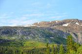 Bergen in noorwegen — Stockfoto