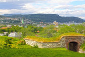 Panorama of Trondheim — Stock Photo