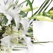 White lily flowers and post card — Stock Photo