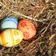 Easter eggs on hay — Stock Photo #39763989