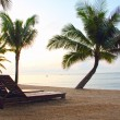 Stock Photo: Chaise-longues on beach