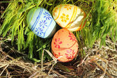 Easter eggs on green grass and hay — Stock Photo