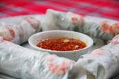 Fresh Spring Roll — Stockfoto