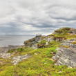 Northern Norwegian landscape — Stock Photo