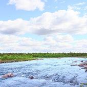 Krajina s lesní řeka — Stock fotografie