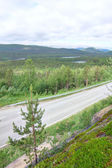 Landscape with forest and road — Stock Photo