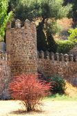 Mittelalterlichen stadtmauer von toledo — Stockfoto