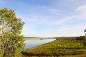 Kemijoki rivier — Stockfoto