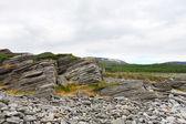 Couches géologiques de roche — Photo
